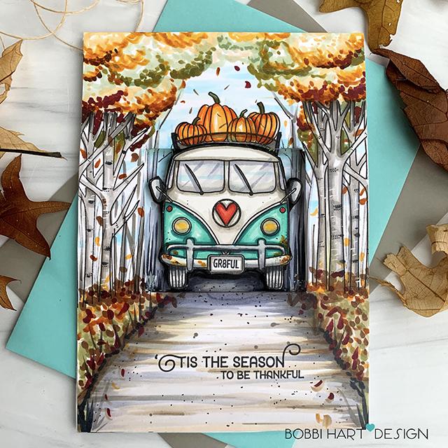 Cruising Through the Seasons