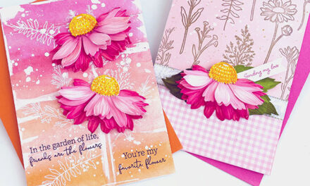 Summer Stems and Coneflower Cards